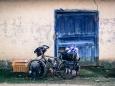 cyclingdutchgirl-multicycle-18