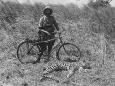 kazimierz_nowak_leopard_hunting