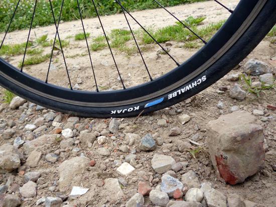Over Zwerfpoezen, Duiven en Cyclocross banden