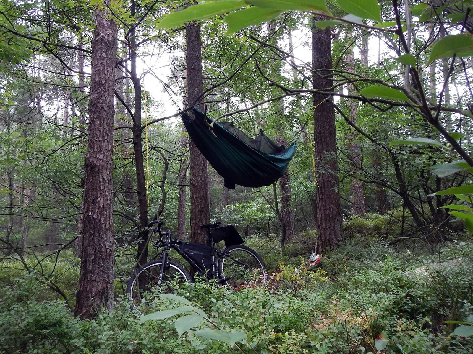Hangmat kamperen